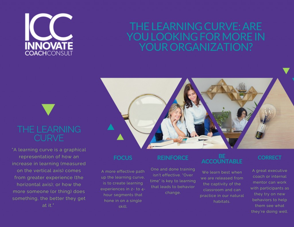 The Learning Curve: Are You Looking for More in Your Organization?
